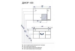 ДИОР 100
