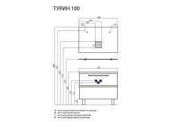 ТУРИН 100